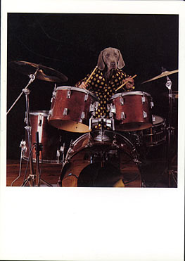 dog-drumset-drums-greeting-card.jpg
